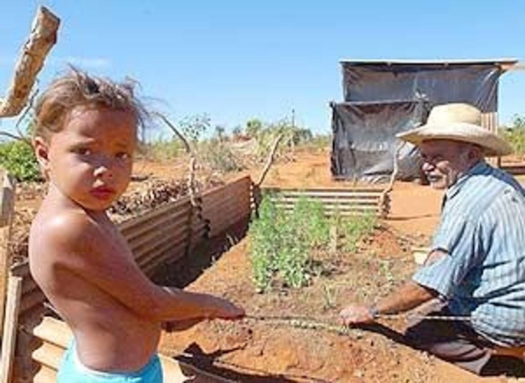Illustrasjonsfoto fra den brasilianske landsbygda.