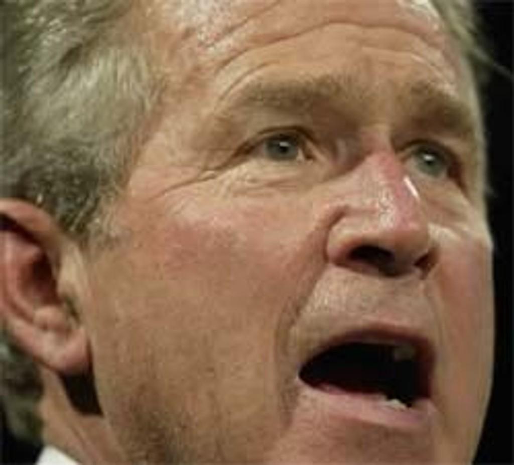 George W. Bush under et valgmøte i Marlton, New Jersey, 18. oktober.
