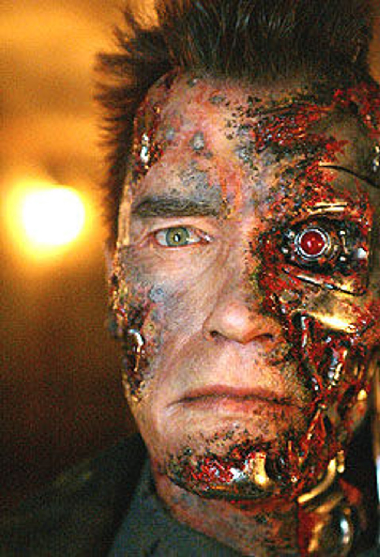 Terminator 3 t3 Arnold Schwarzenegger