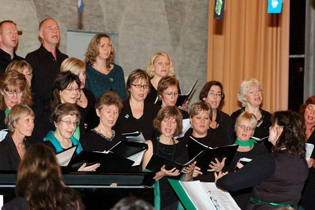 Årvoll Sang Ensemble ga alt under søndagens konsert i Tonsen kirke.