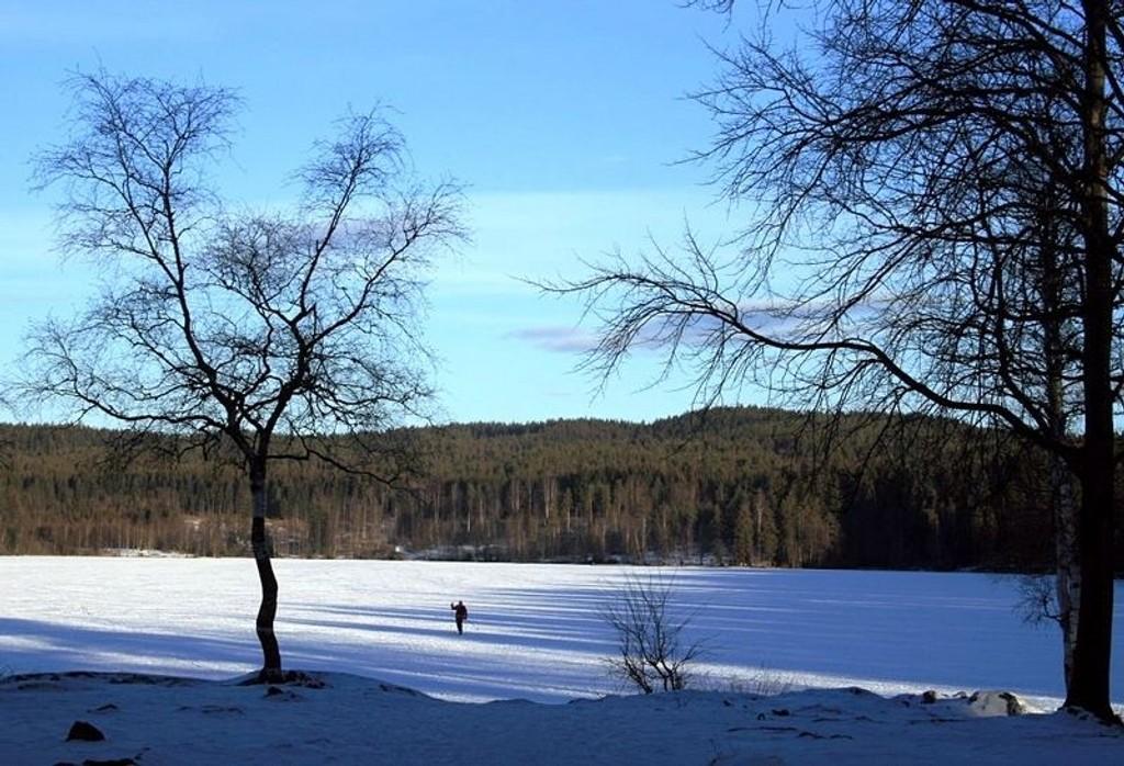 Sognsvann i sin vakreste vinterdrakt.