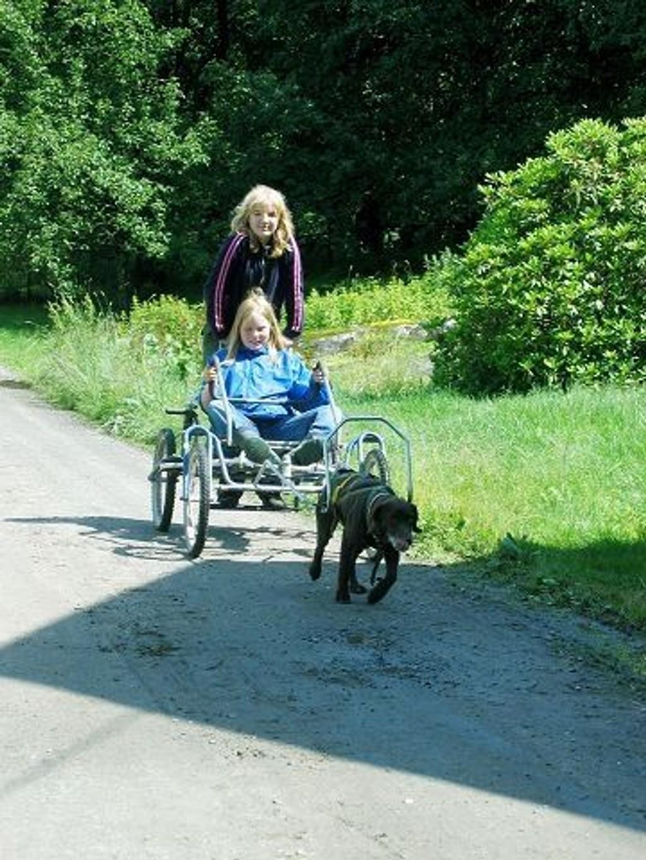 4H-klubben vil ha et mangfold av ulike aktiviteter. Her fra et kurs i hundekjøring ved fylkesleiren i 2007. (Foto: privat).