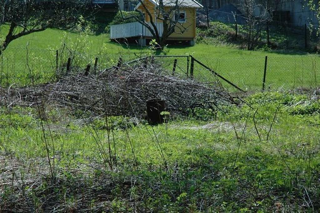 At hageavfall blir kastet over gjerdet på kommunal grunn eller kjørt ned til bredden av Lysakerelva er et økende problem. Foto: Vidar Bakken