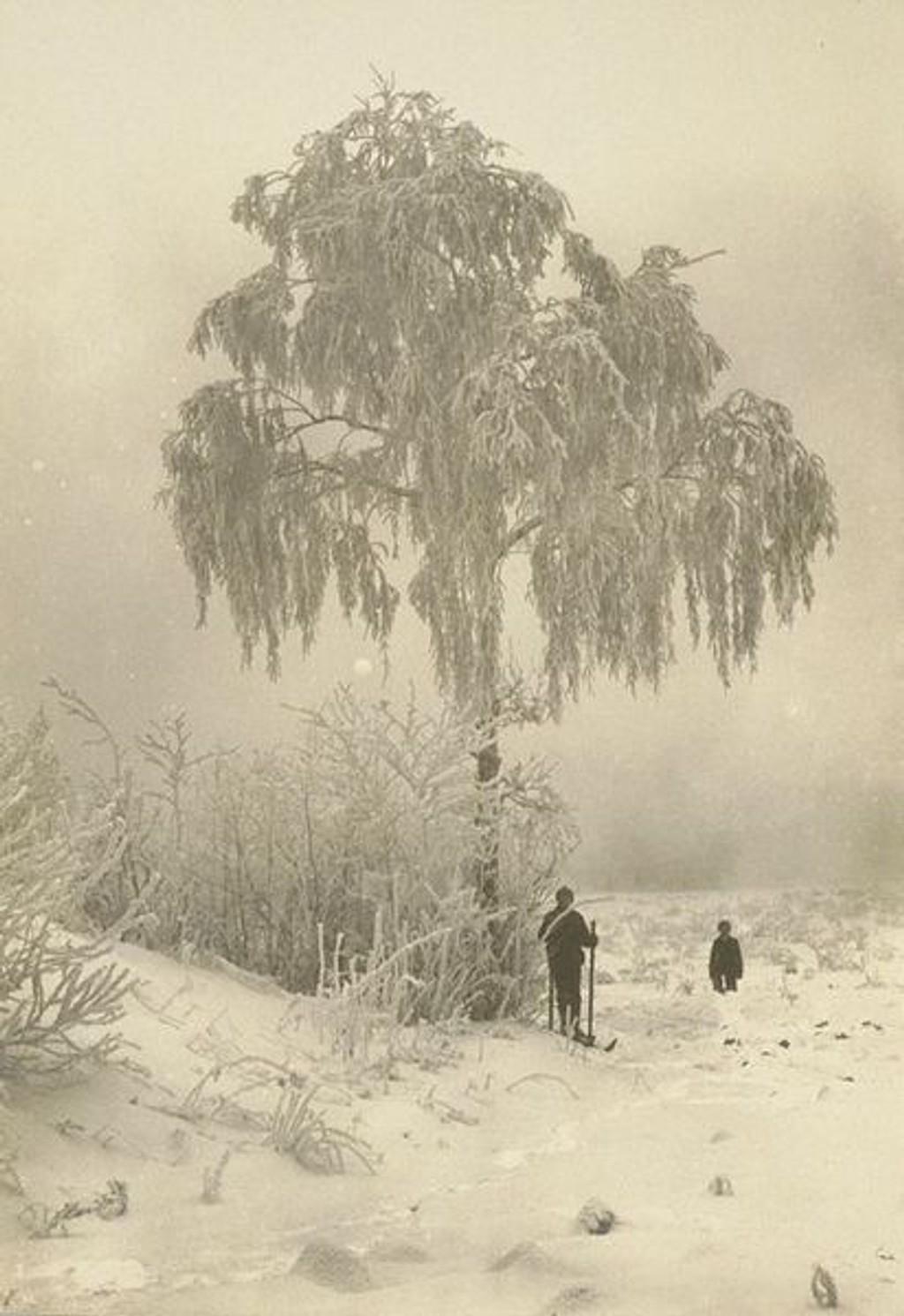Vintersol og taage, ca. 1900, nfhf