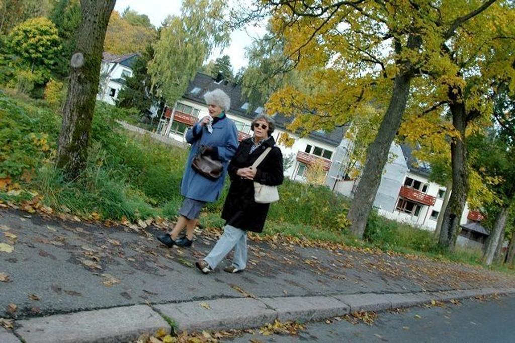 Bygdøyveien og Hengsengveien er populære turveier. Hengsenga borettslag vender ut mot jordene mot Bygdøy Sjøbad. FOTO: JULIE MESSEL