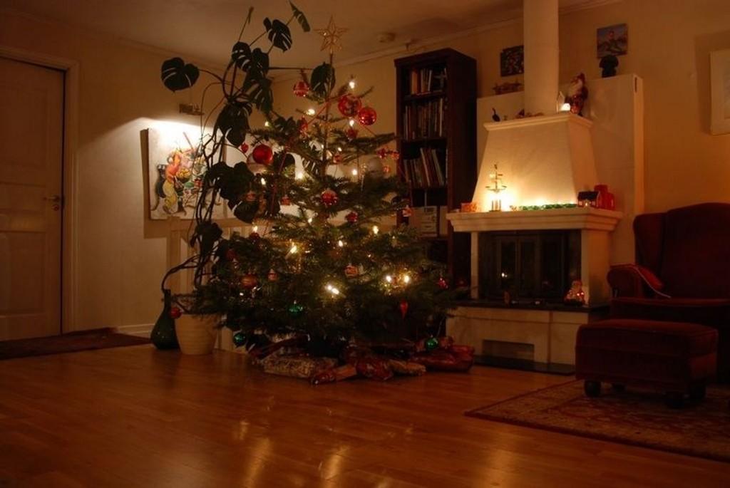 Juletrærne skal til gjenvinng.