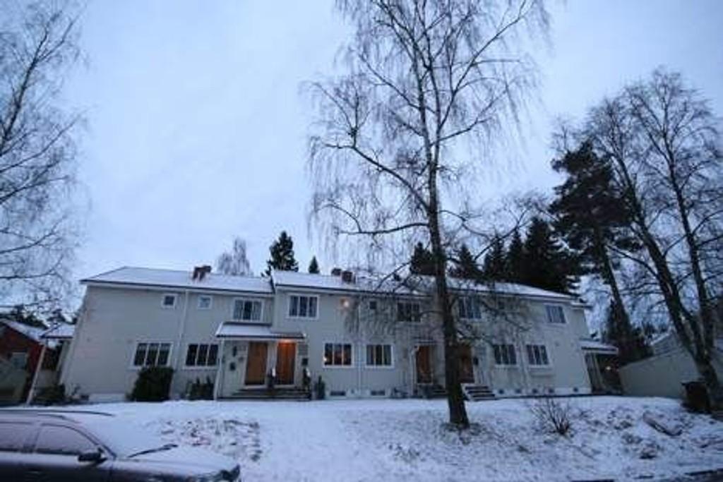 Foto: Øystein Dahl Johansen