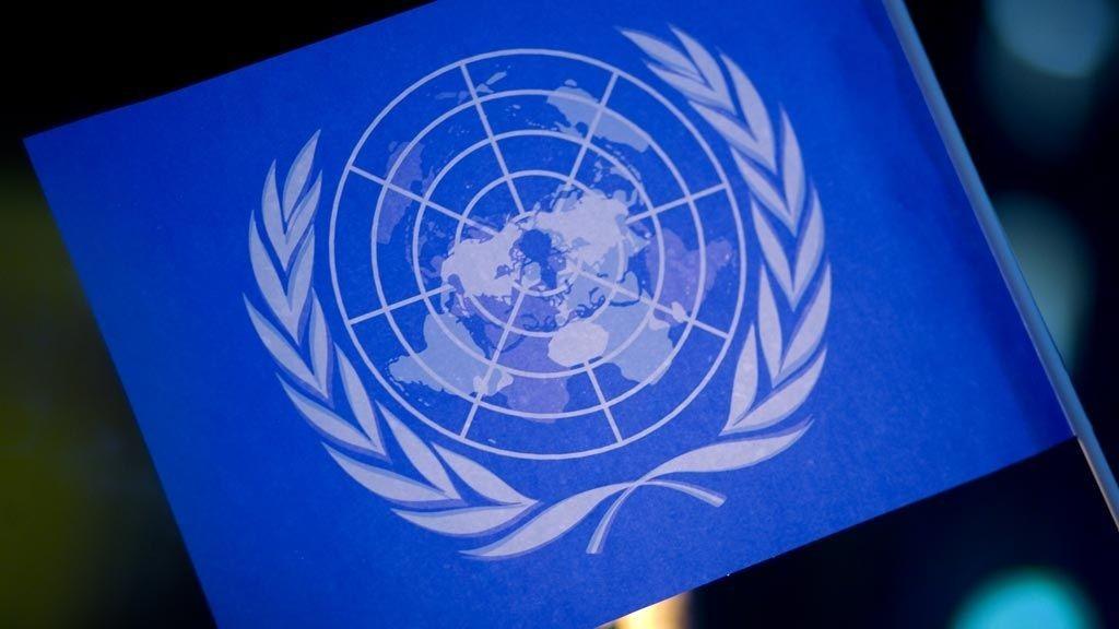 VIKTIG: Som ungdomsrepresentant i FN kan du delta i interessante diskusjoner og være med å ta viktige beslutninger.