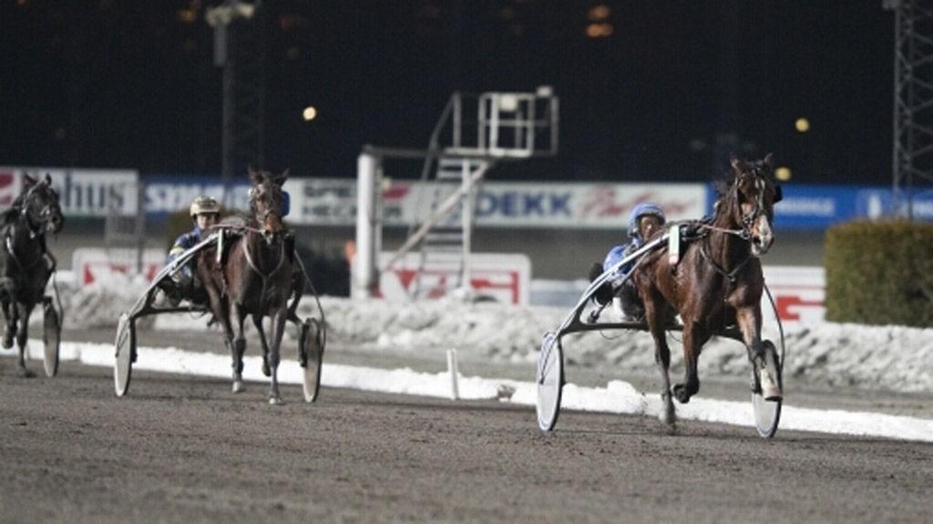 Hendrix vinner overlegent foran stallkamerat Gehør/Malmin på Bjerke 21.01.09