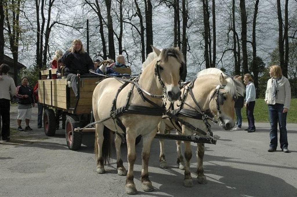 Lørdag er det 50. gang Nordre Skøyen barnehage inviterer til familiedag med kortesje. Hest og kjerre er ikke et ukjen syn pådet tradisjonsrike arrangementet på hovedgården. Arkivfoto: Kristin Trosvik