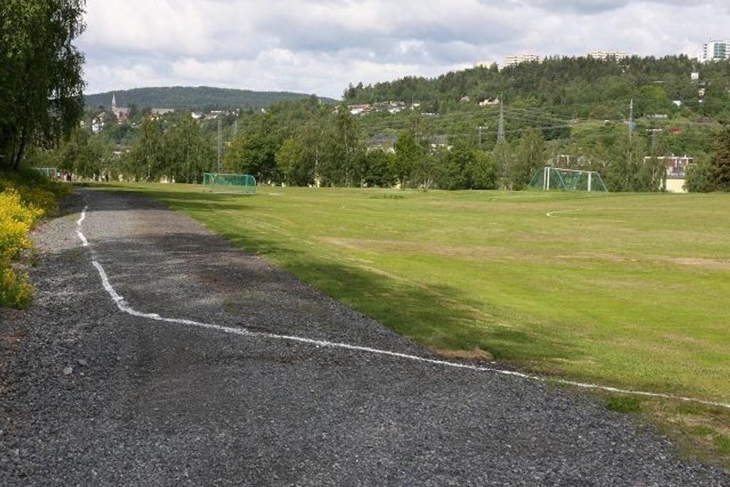 Etter at Idrettsetaten fjernet gresset cricketspillerne hadde lagt på turveien, gikk de bokstavelig talt over streken med kritt.