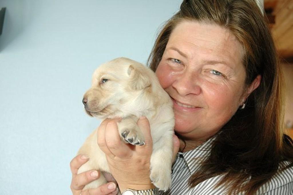 Anbefales: Mette Sollie anbefaler folk som vurderer å anskaffe hund til å prøve seg som fôrvert for en kommende blindehund. Ved å huse en hundevalp som denne lille krabaten, kan man man gjøre en god gjerning og samtidig få verdifull innsikt og opplæring i hvordan det er å ha hund. foto: Nina Schyberg Olsen