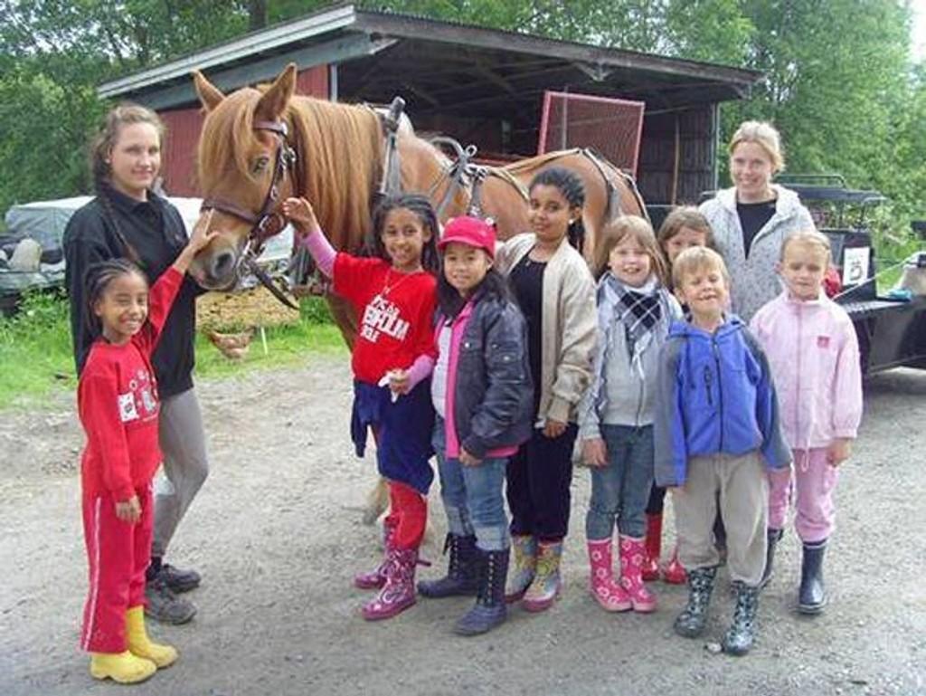 SFO-barn på Rosenholm har gjennom siste skoleår hatt et nært forhold til Søndre Aas gård hvor kontakten med dyr har stått sentralt.