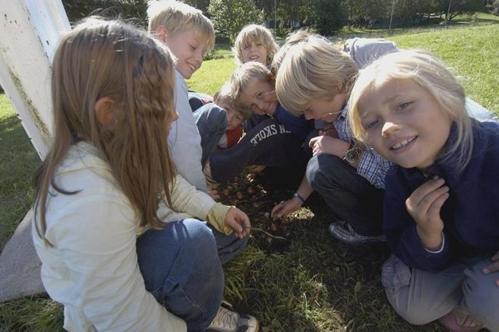 Elevene brukte god tid på plasseringen. FOTO: ELISABETH C. WANG