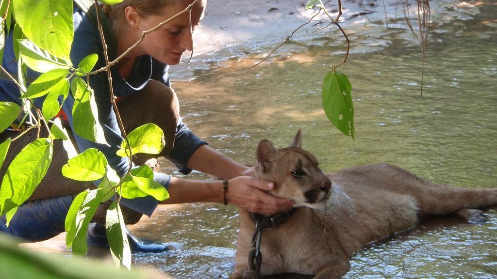 KATTEVASK: Luna bader i en bekk i jungelen, Jessica passer på.