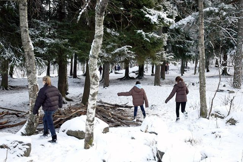 Den lille skogen ved Trasop skole er mye brukt, men da Oppsal Arena lå på tegnebrettet var forutsetningen at det skulle bygges adkomstvei her.