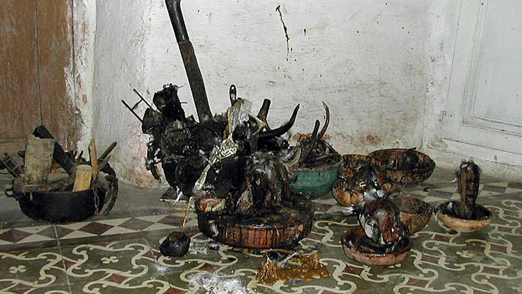 ILLUSTRASJON: Dette er restene etter en santeriaofring på Kuba, blant annet et geitehode, fjer, skåler med størknet blod og en machete.