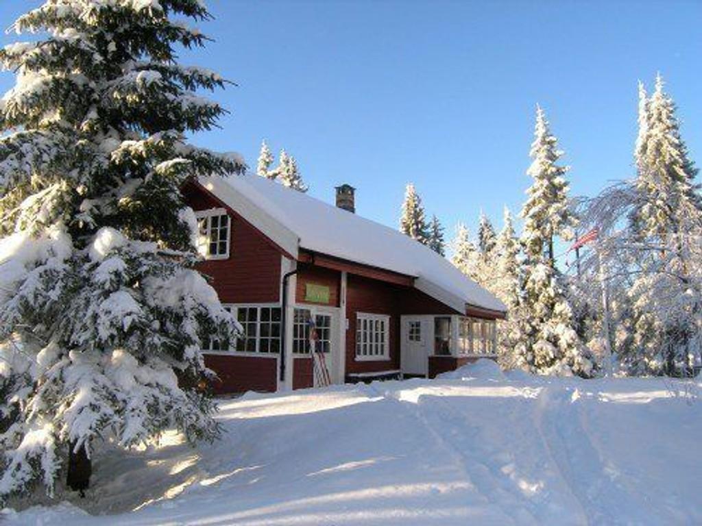 DNT Oslo og Omegn søker frivillige til hytta Fjellvang i Lillomarka. Foto: DNT Oslo og Omegn