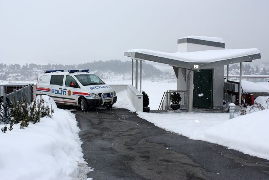 Væpnet politi pågrep i formiddag en 29 år gammel mann som løsnet skudd mot et bolighus i Bekkelagsterrassen.
