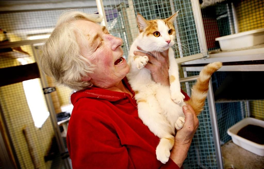 – Her får kattene kos og stell flere ganger daglig, lover pensjonateier Jenny Bjerge Hansen på Lønaas i Bærum.
