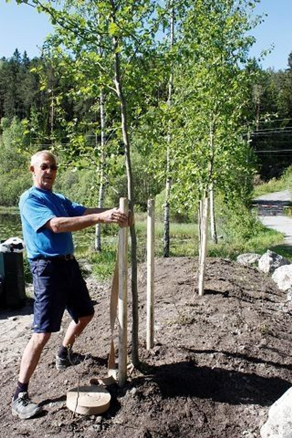 Det er både plantet trær og satt ut blomster ved Stensrudtjern. Gartner Frank Børud håper trærne får stå i fred. Alle foto: Arne Vidar Jenssen.