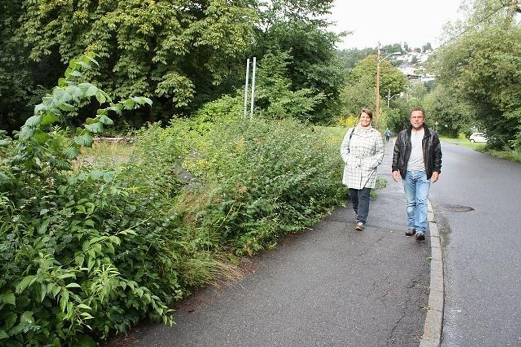 Tone Tellevik Dahl (nestleder i byutviklingskomiteen) og partikollega Eivin Sundal (leder av Bekkelaget arbeiderpartilag) vandrer langs Ormsundveien. Alt på venstre side blir etter makeskiftet Oslo havns eiendom.