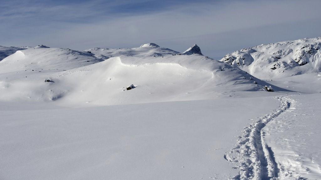 Hvor er de flinkest på langrenn i Norge?