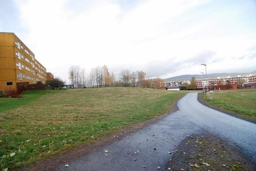 Oslo kommune foreslår omregulering av den grønne tomten, ned mot trærne i enden, mellom Lindeberg legesenter og skolen, til område for religionsutøvelse. Beboere i området er opprørte.