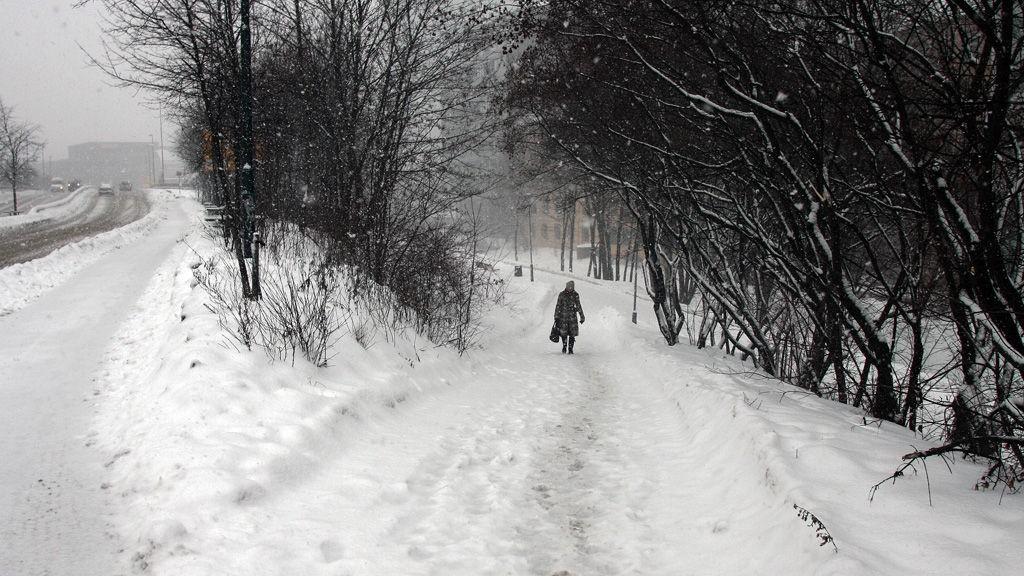 Snøfall og vinter i Oslo.