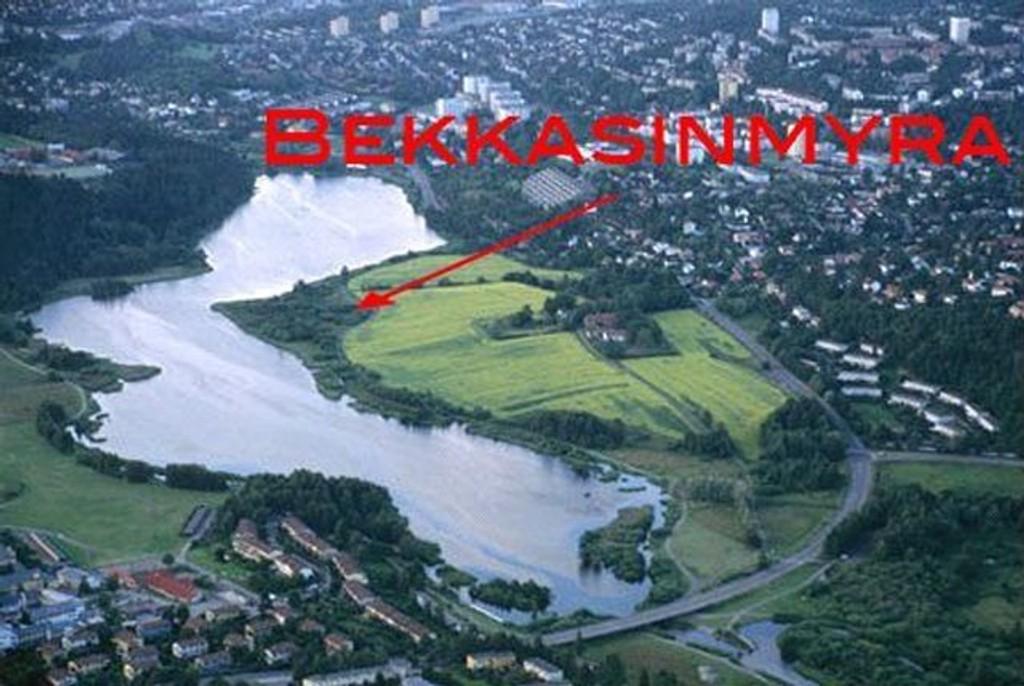 For de som måtte lure på hvor den mye omtalte Bekkasinmyra ligger, er det der den røde pilen peker.