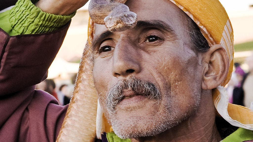 Slangetemmeren på Djemaa el-Fna var ikke bare flink med slangene sine, men også en dreven forretningsmann.