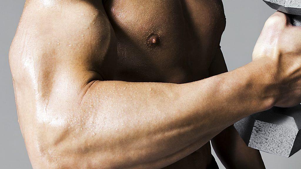 alle muskler i kroppen
