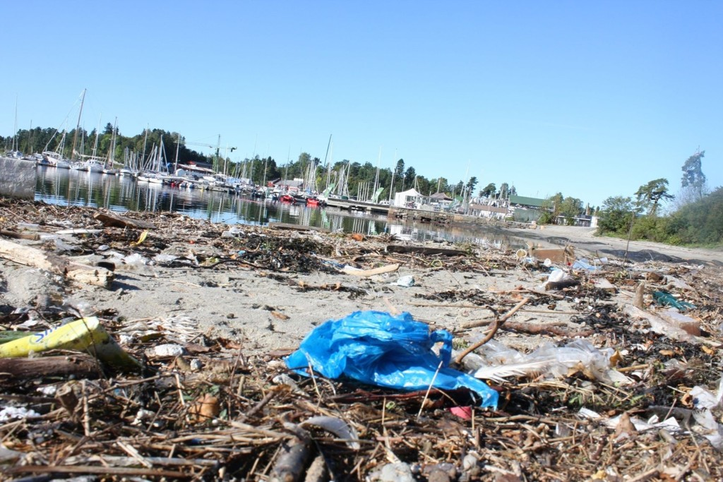 – MÅ BORT: På sensommeren så det slik ut på Bygdøy Sjøbad. Naturverner Jan E. Magnusmener at plastposene er en uting. Arkivfoto
