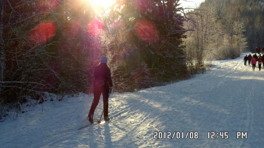 PÅ SKI: De var ikke mange, men noen fikk seg søndag sesongens første skitur i Østmarka. Og med nydelig sol ble det en trivelig opplevelse. For dem som ikke hadde forberedt seg til skitur, ble det like bra til fots.
