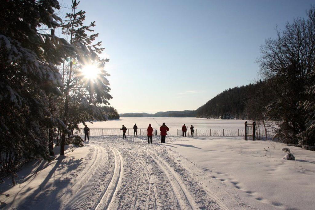 VINTERSØNDAG: Etter et godt snøfall på lørdag, kunne vi våkne til en søndag hvor skitur for mange sto som en selvfølge på programmet. Og de som valgte Østmarka og Elvåga som her på bildet, fikk seg en flott opplevelse.