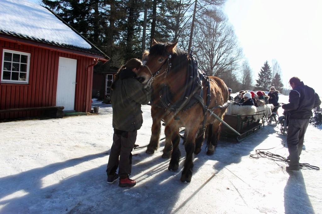 Med hest og slede: Beboerne ved Hovseterhjemmet koste seg blant annet med kanefart i Maridalen.