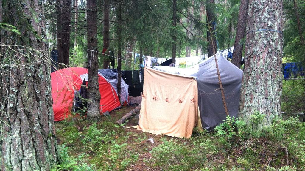 HER ER VI IKKE VELKOMNE: En del romfolk har slått seg ned i et avsidesliggende sted i Nordmarka, på Statsbyggs område.