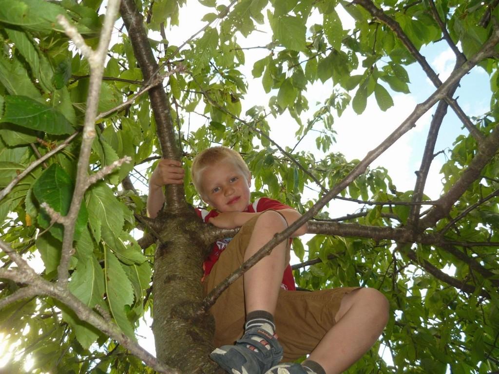 LEK OG MORO: Jakob er glad i å leke utendørs og synes det er moro å klatre i trærne.