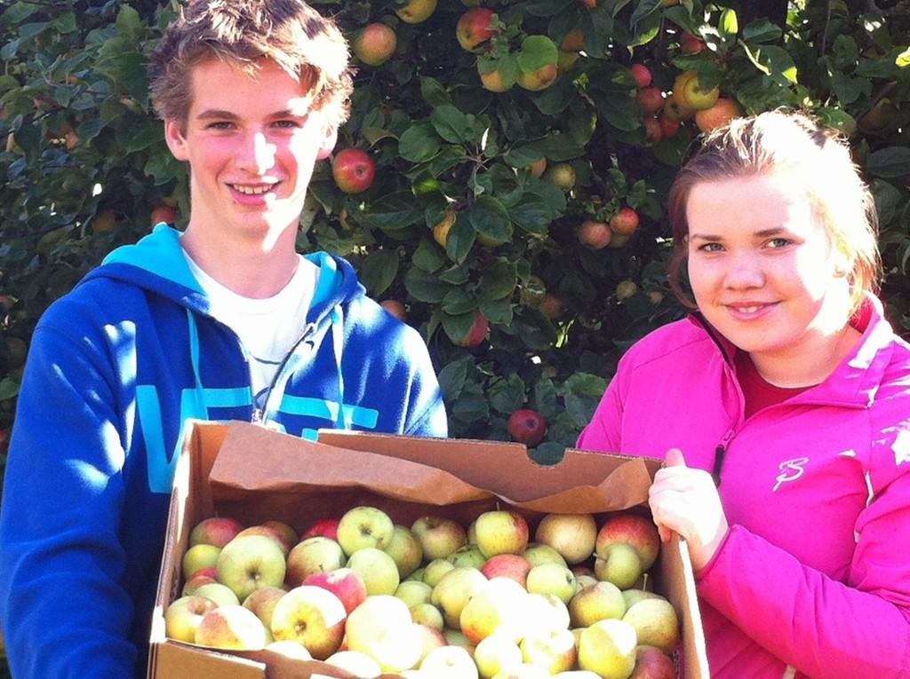 PENGER: Epler betyr cash i reisekassa, her Sander Berg og Ingeborg Bjørlo fra niendetrinnet på Engebråten Ungdomsskole.