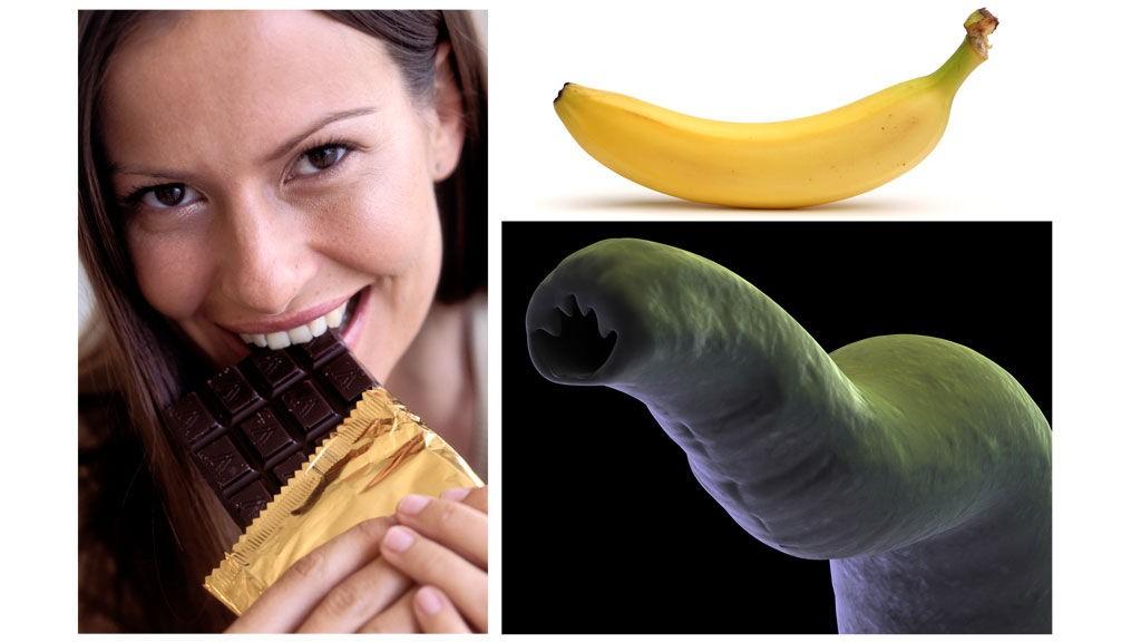MANGE RÅD: Spis deg kvalm på sjokolade, innta bare bananer til frokost og spis ellers som du vil, eller sørg for å få en orm som denne i fordøyelsessystemet. Dette er blant slankerådene du finner på internett.