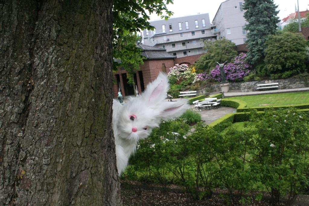 Hva gjør denne kaninen i Oslo? Vel, du må vente til helgen med å finne ut.