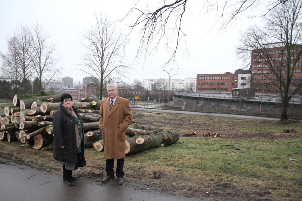 Bamer og Luciano er svært misfornøyde med at disse trærne er felt