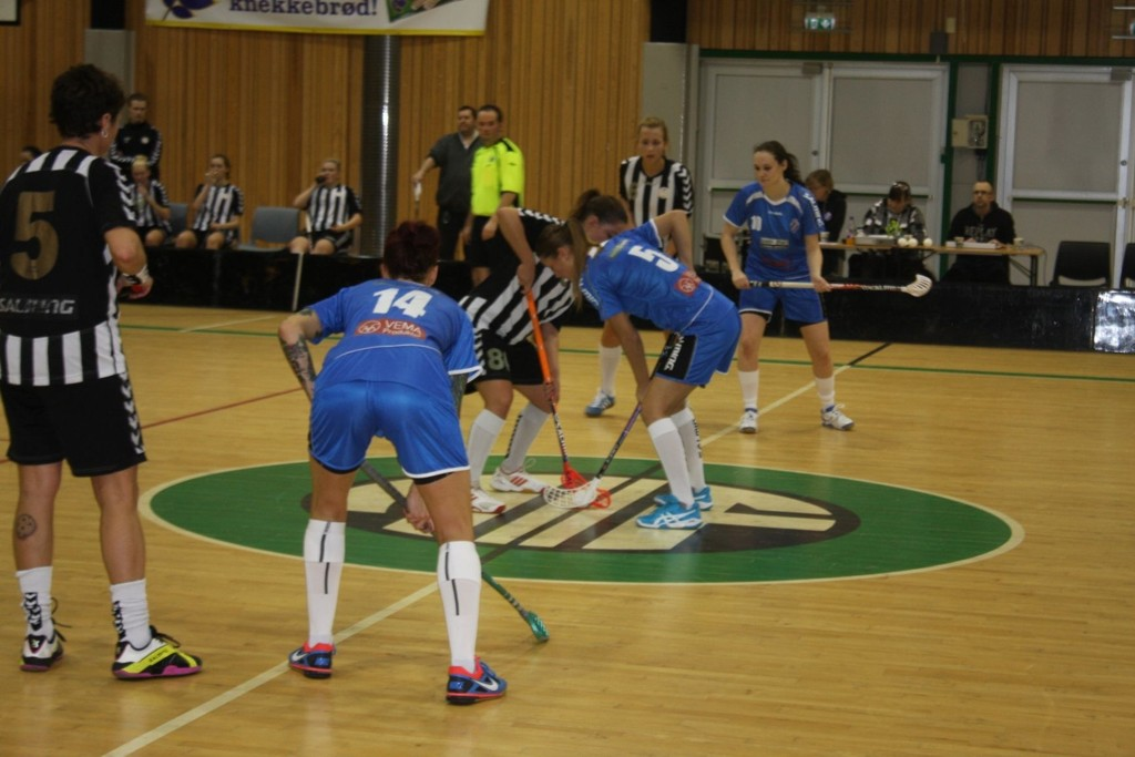 Grei vant 6-0 mot Sagene på hjemmebane i Appaløkkahallen.