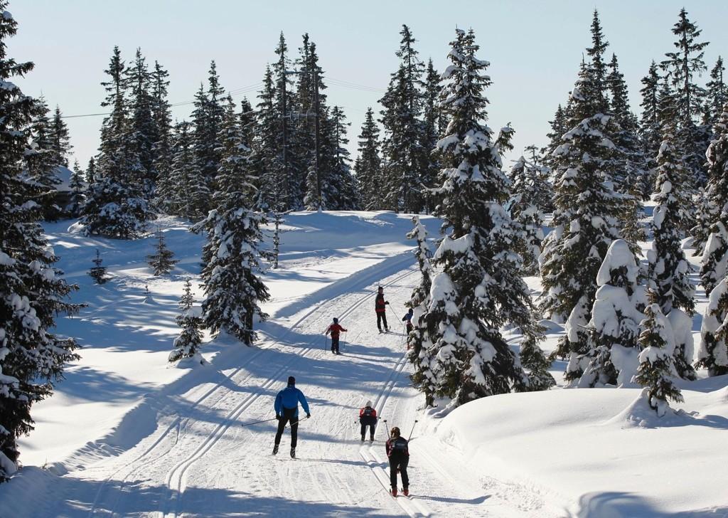150 skientusiaster har hoppet på skiforeningens tilbud om en skitur på Sjusjøen på lørdag.