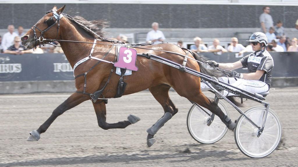 Roberth Bergh, her bak You Bet Hornline, kjører Nettavisens banker Bro Viking på Romme.