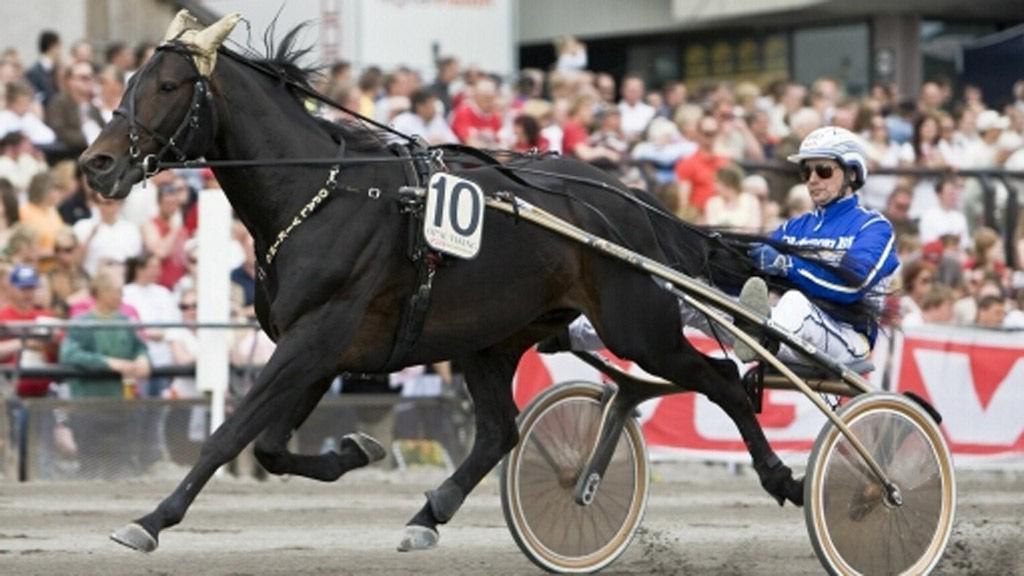 Jorma Kontio sitter bak vår alenestrek på Solvalla i formiddag. Foto: hesteguiden.com