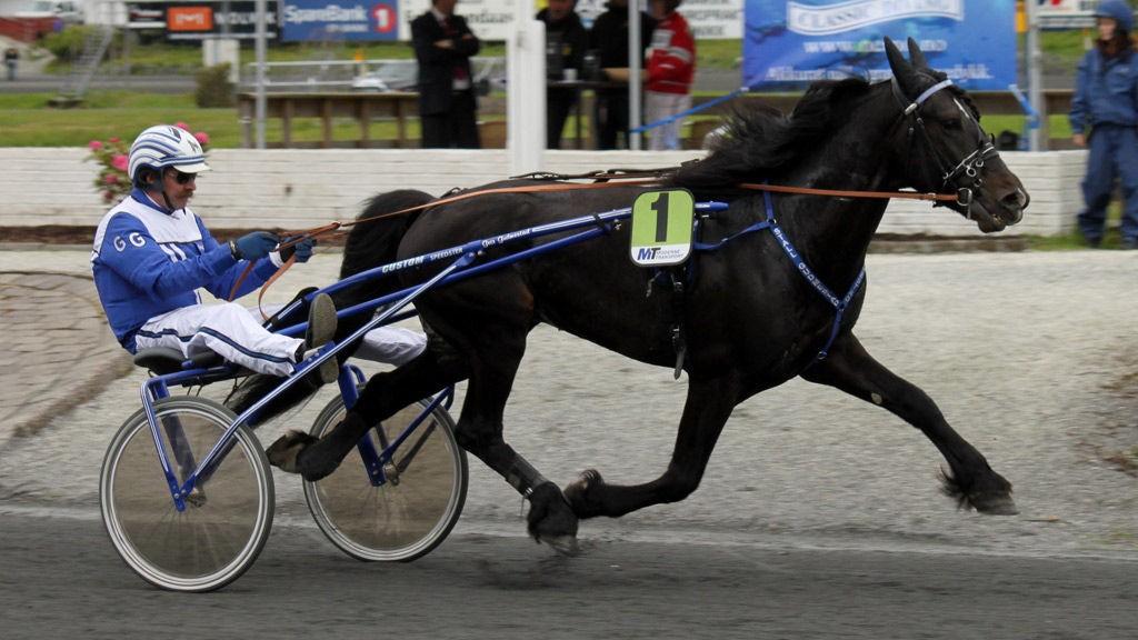 Dag Odinson er den kapasitetsmessig beste hesten i V64-3. Foto: hesteguiden.com