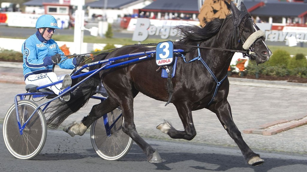 Gjerde Åsar er solgt til Sverige. I formiddag er det debut i ny regi for hesten som har konkurrert på Bergen Travpark hele karrieren. Foto: hesteguiden.com.