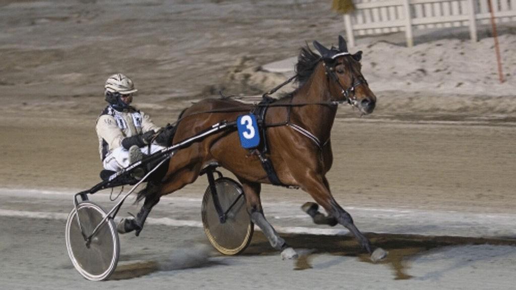 Magnus Jakobsson bak norgeskjenningen Yank Dreamcatcher.