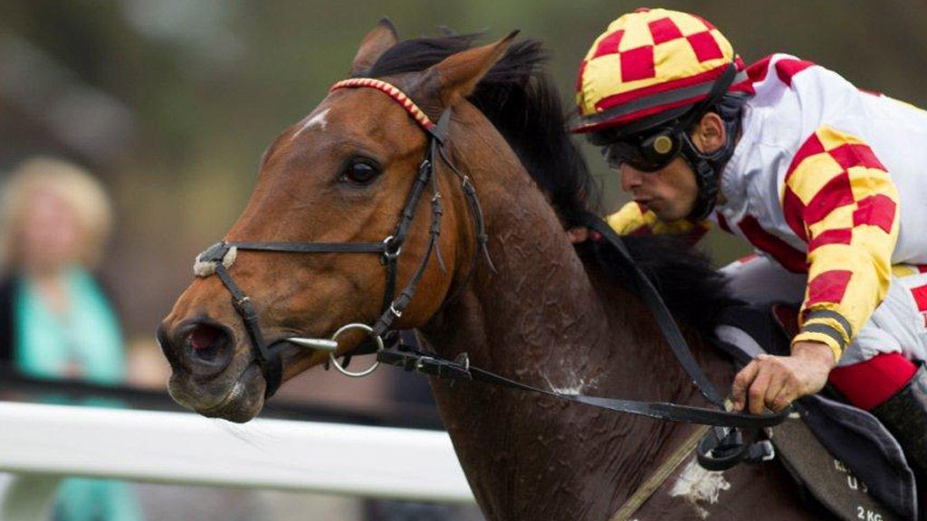 Toppjockey Elione Chaves er selvsagt på plass på Täby onsdag.